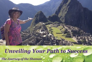 Dani Burling, medicine wheel, shaman, workshop, energy, chakras,