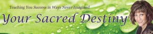 YSD-Banner-August2011-900